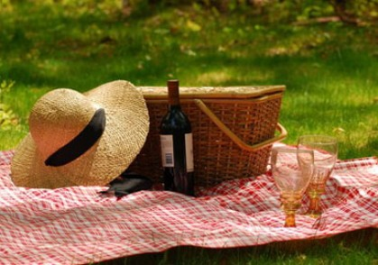 wine-picnic